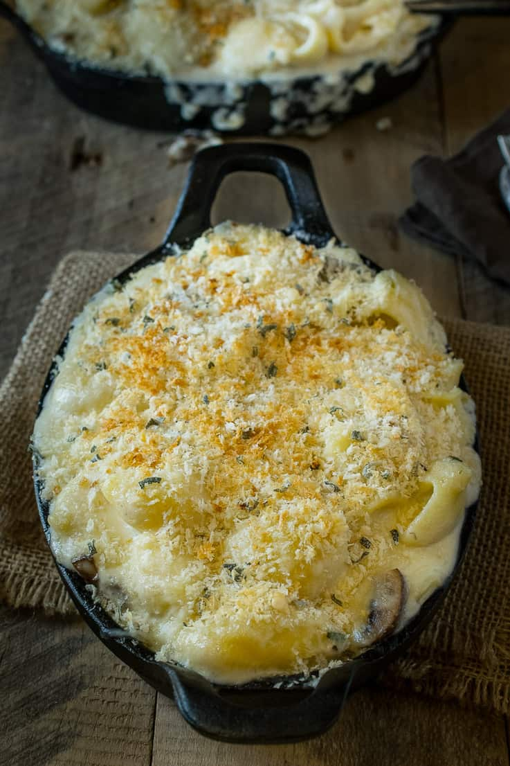 Mushroom, sage mac and cheese. Creamy, really creamy and gooey cheese sauce with a meaty bite from mushrooms, earthy flavor from fresh sage (for an essence of Fall) and a crunchy panko breadcrumb topping. It's comfort food taken to the next level.