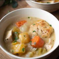 Chunky vegetables and browned dumplings in a bowl of chicken stew