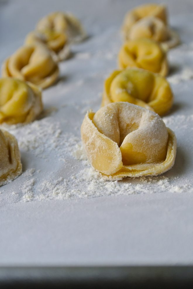 Homemade Cheese Tortellini lined up on a board