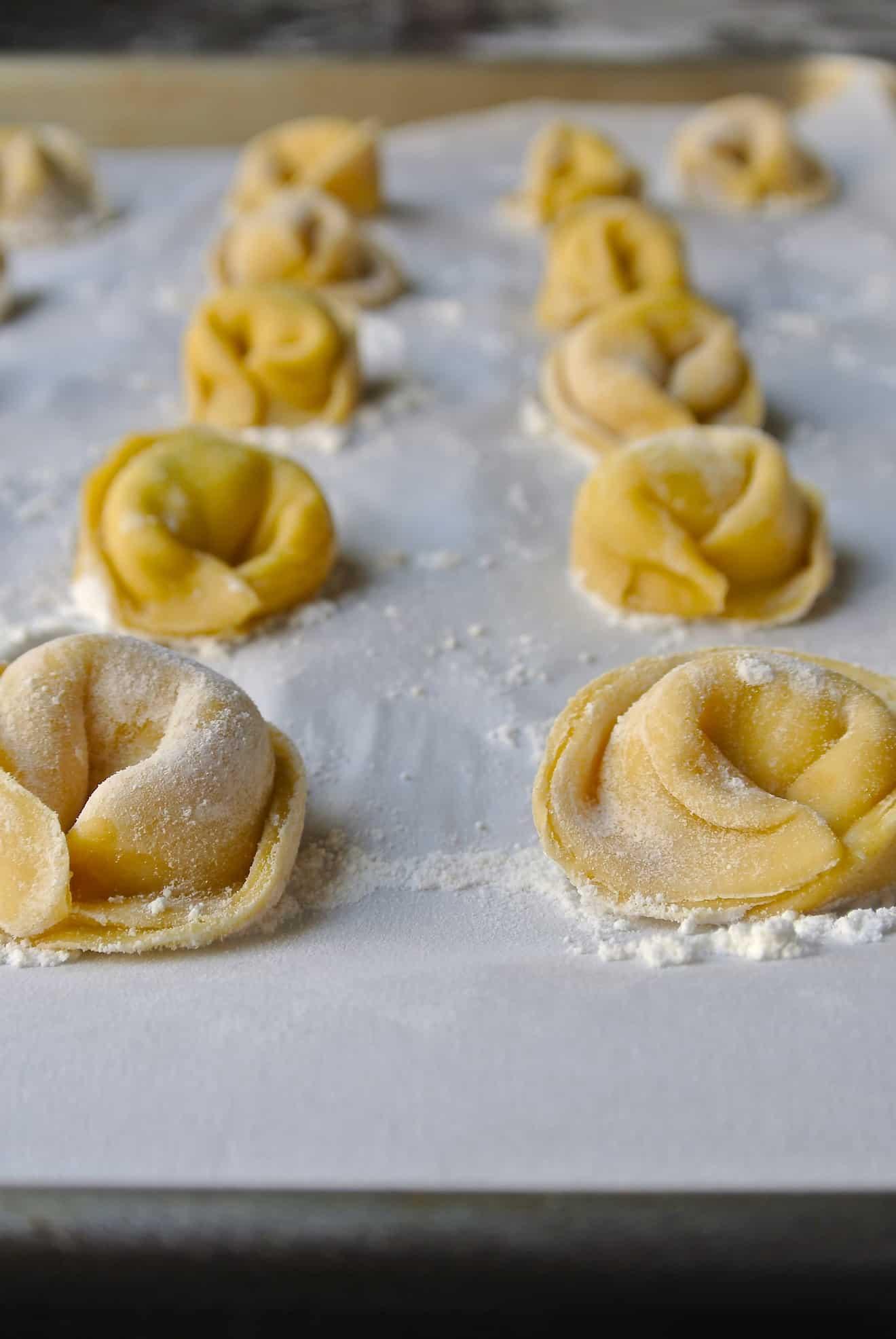 Freshly made cheese tortellini