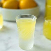 Small glasses of homemade limoncello