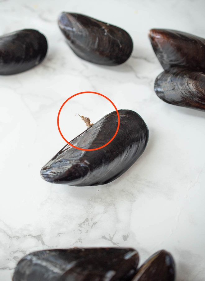 Mussels showing the beard that needs to be removed