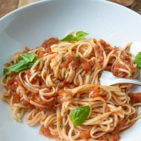 Linguini pasta and tomato sauce on a fork in a white bowl